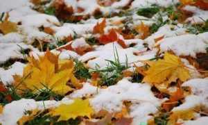 На первый снег заговоры