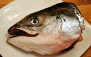 К чему снится рыбья голова